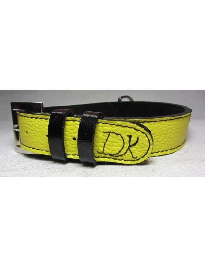 """Fashion Strom"" Dog Leather Collar"