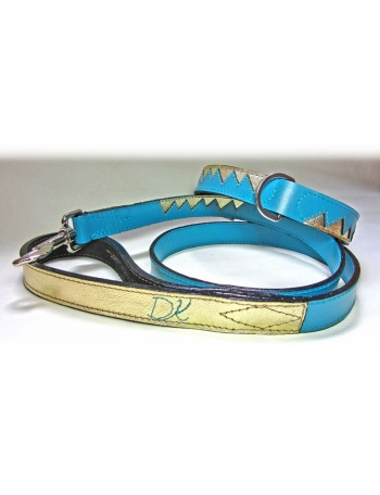 """Golden Dragon Teeth"" Dog Lead & Collar Package"