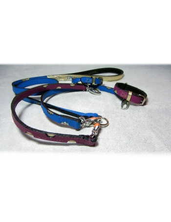 """Twin Peaks Coupler"" Dog Lead Coupler & Dog Collars Package"
