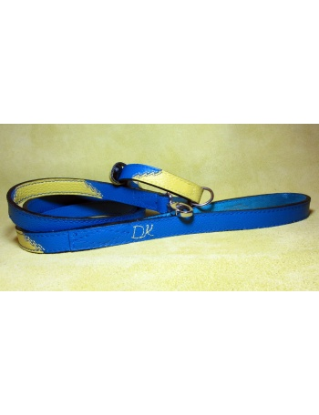 """""""Dreaming of summer"""" - Dog lead & collar package"""