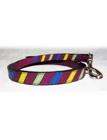 """Lollipop"" - Unique dog leather lead"
