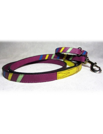"""Lollipop"" - Dog lead & dog collar package"