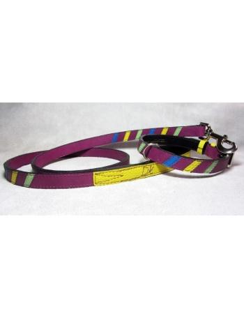 """Lollipop"" - Dog lead & dog collar package"