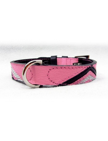 """Dreaming of perfection"" Dog Leather Collar"
