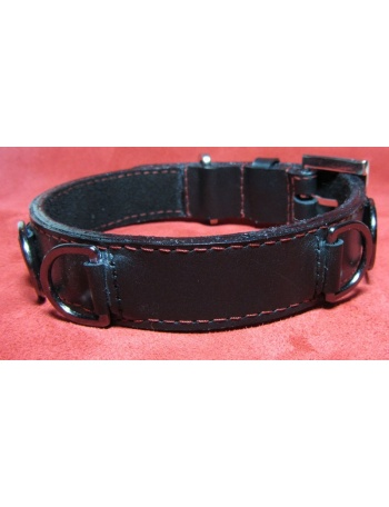 """Fearless Warrior"" Dog leather collar"
